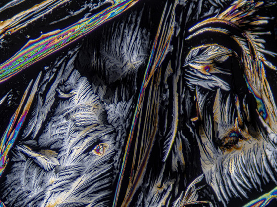 Kunst unter Mikroskop