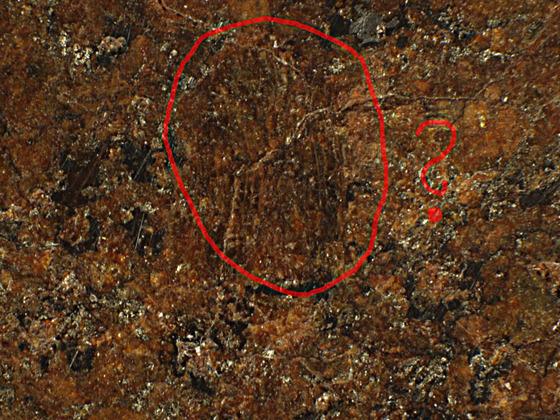 UFO,Sahara Chondrit ?